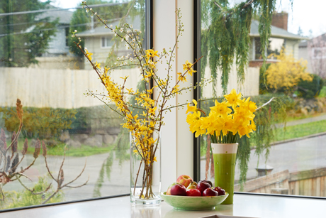 Detail of Corner Window Looking NorthEast-Award Winning Kitchen Design