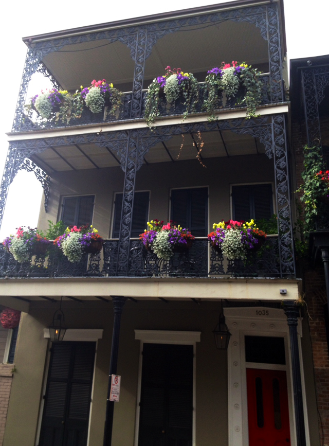 French Quarter flowers