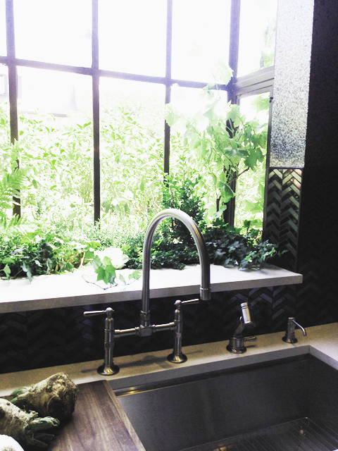 One of Many Garden Windows in the Kitchen