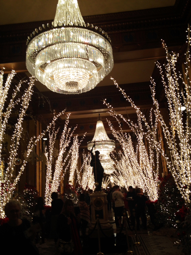 Fairy Lights at the Roosevelt