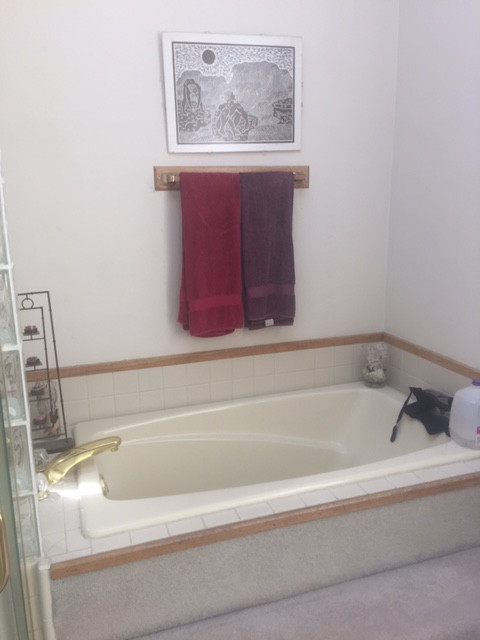 BEFORE-Tub